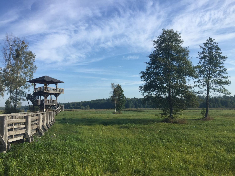 Polen camperreis nabij Bialowieza