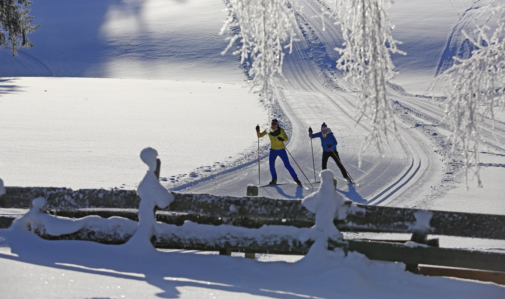 Oostenrijk langlaufen