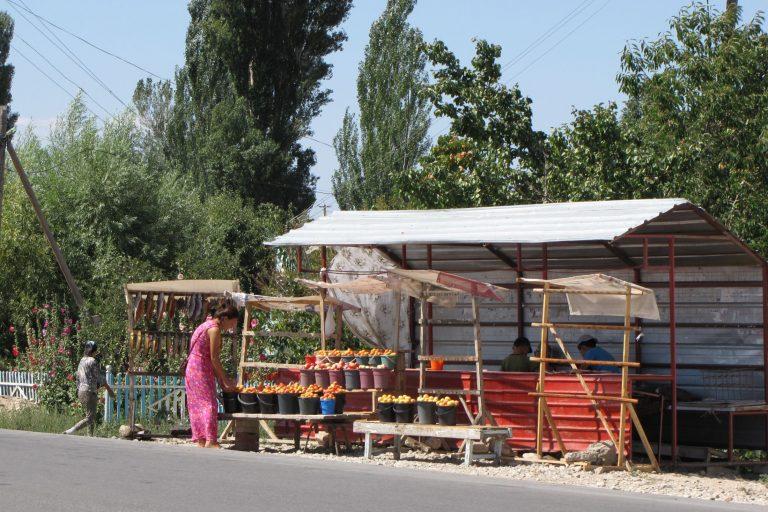 Kirgyzie berm economie